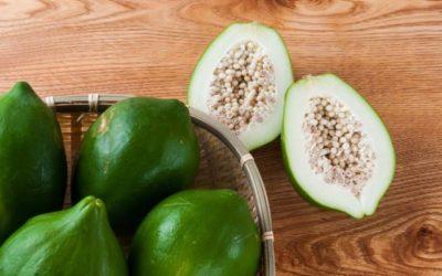 La papaya verde, un frutto acerbo dalle sorprendenti proprietà benefiche